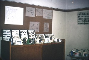Sede GSAL in via Ricci, anni '70, foto di archivio.
